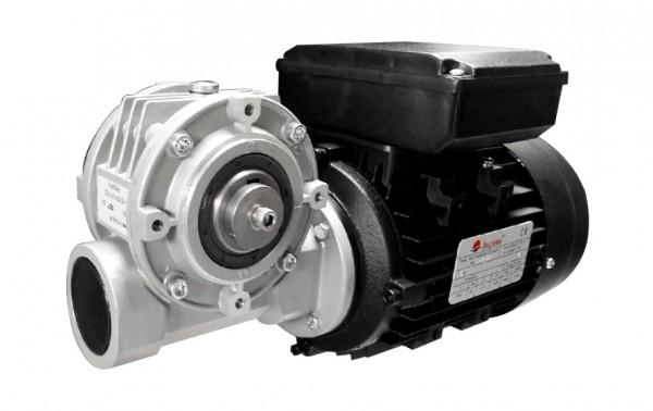 Austauschmotor / Getriebemotor